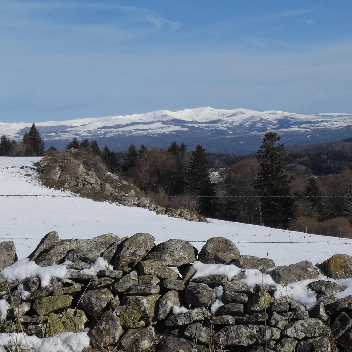 Vue des monts du Cantal enneigés